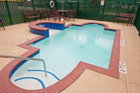 Lexington Hotel Houston Medical Center: Pool