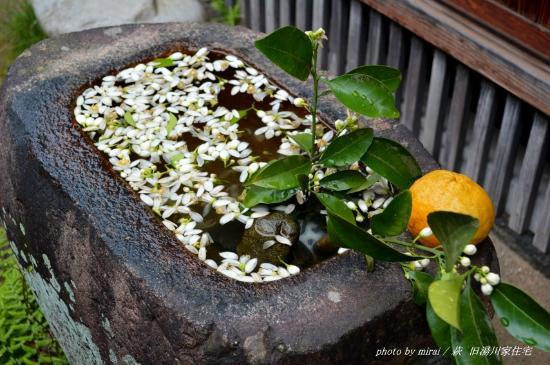 Yukawa Family Old Residence : 萩らしい生け花も