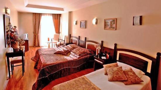 Aspen Hotel: Guest Room