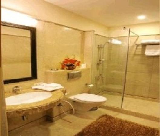 Parkland Safdarjung Enclave: Bathroom