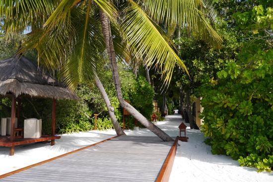 Banyan Tree Vabbinfaru Photo