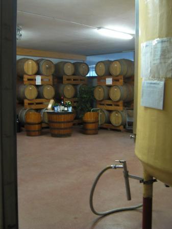 Moncalvo, إيطاليا: interno