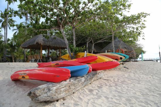 Dos Palmas Island Resort & Spa: Kayaks by the beach.