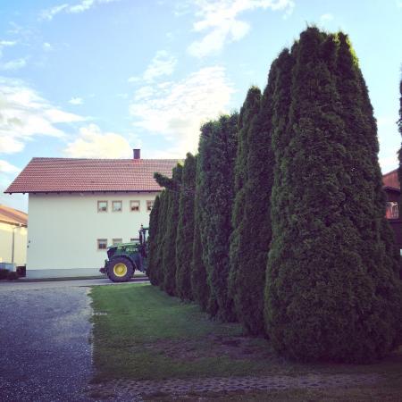 Oberteisbach, Allemagne : Трактор