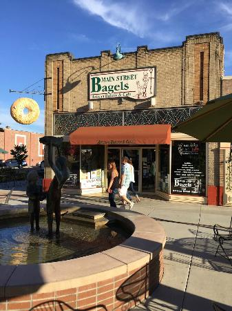 Main Street Bagels Artisian Bakery & Cafe: The best Bagels in Colorado !