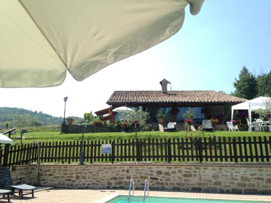 Agriturismo Ponte di Riocchio : Esterno piscina