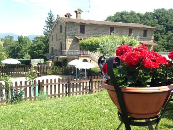 Agriturismo Ponte di Riocchio : Esterno