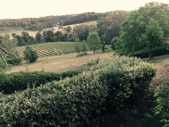 Chateau de Sanse: View from Hotel terrace walking to car park