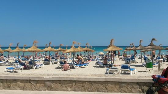 Sa Coma beach from the promenade Picture of Protur Safari Park
