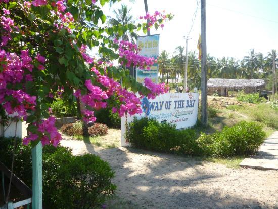 Stardust Beach Hotel Arugam Bay Sri Lanka