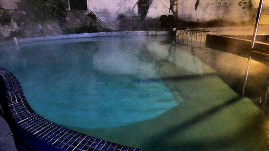 Chelmswood Motel : thermal pool