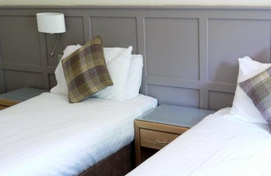 The Royal Victoria Hotel Snowdonia: Classic Twin
