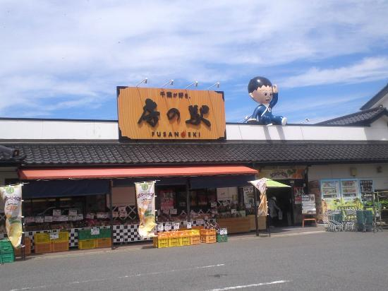Araoi Fusanoeki
