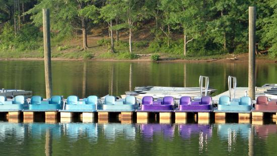 Rock Creek Regional Park: Puedes alquilar un kayak o estos para pedalear.