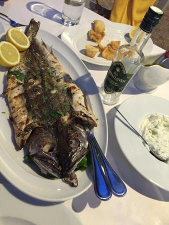 Classic: Tasty seafood!!