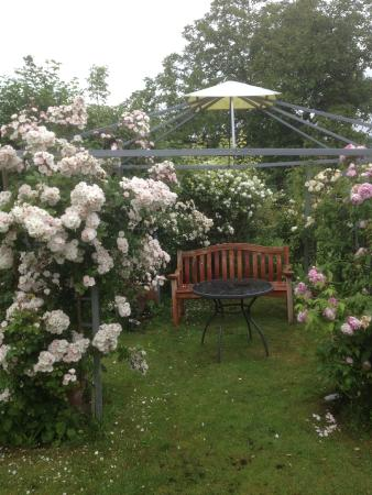 Hillview Cottage: Garden arbour