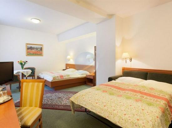 Hotel Pension Arian: Queen Bed and Sofa Sleeper