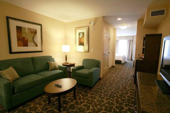 Hilton Garden Inn Charlotte/Concord: Suite