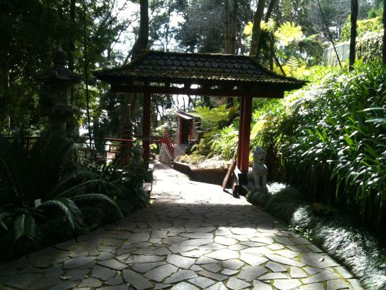 Foto de monte palace tropical garden, funchal: lys og grønne ...
