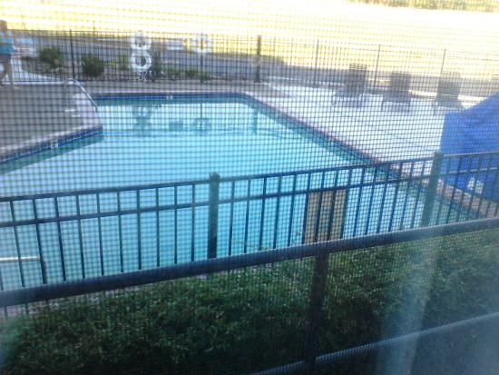 Quality Inn & Suites: The pool from my room.
