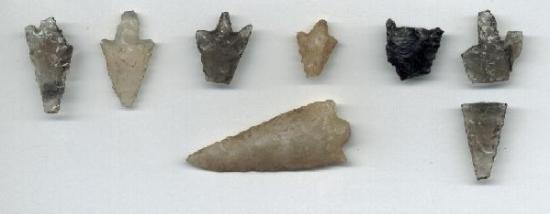 Federal University of Juiz de Fora Museum of Archaeology and Ethnology