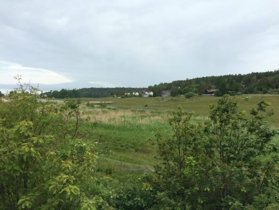 Larvik Municipality, Noruega: Området