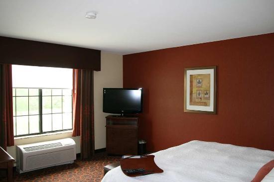 Hampton Inn & Suites Aberdeen: TV in Single King Room