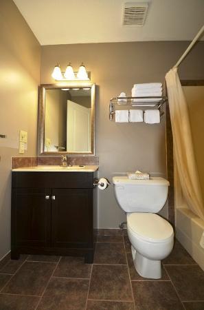 Siesta Suites : Guest room