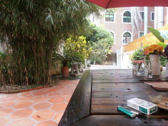 Conch Hotel: les plantessont luxuriantes