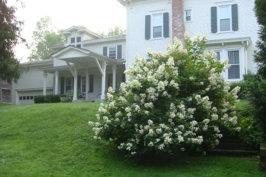Antique Mansion B&B: View from Rutland Country Club