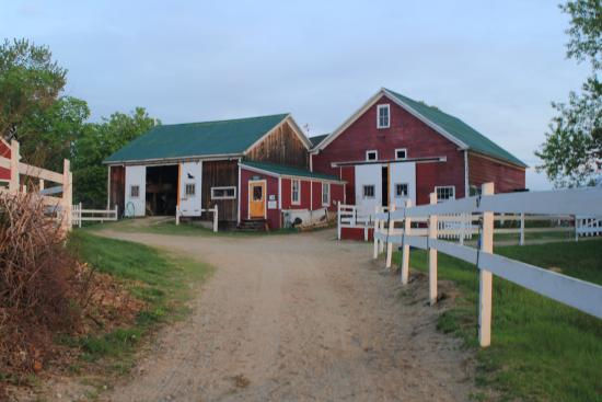Farm by the River Bed and Breakfast with Stables : the barns