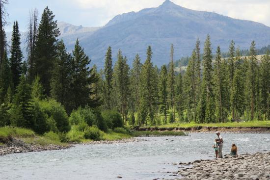 Fly fishing picture of crossed sabres ranch cody for Cody wyoming fly fishing