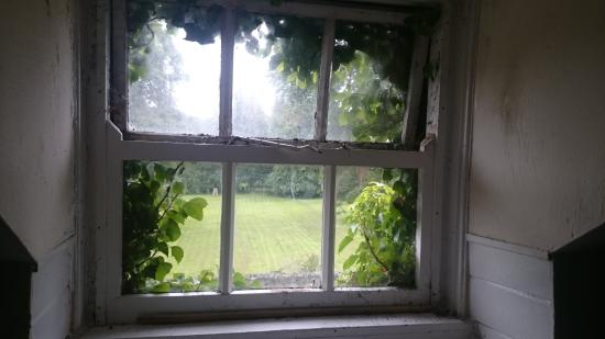 Meifod, UK: The window in our attic room was a bit overgrown