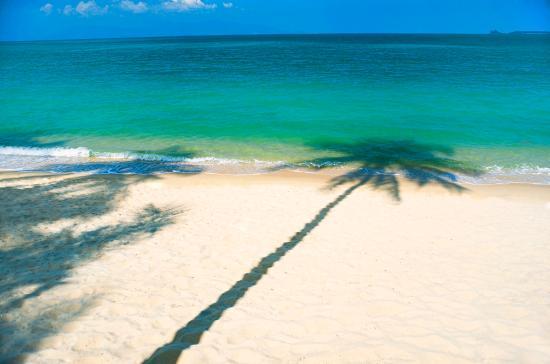 ดับเบิ้ลยู รีทรีท เกาะสมุย: Who Wnfacilities