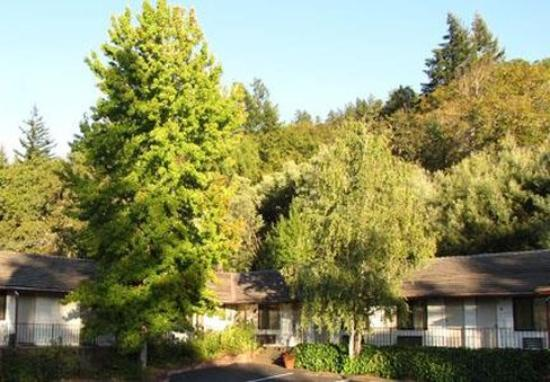 Photo of Humboldt Redwoods Inn Garberville