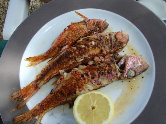 Le Beau Rivage : plat de poisson