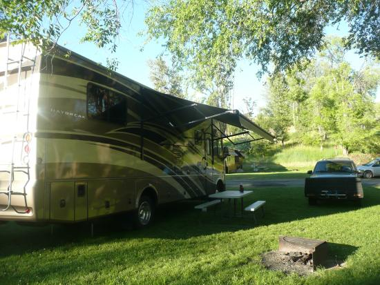 Pine Near RV Park & Campground: Sight 21
