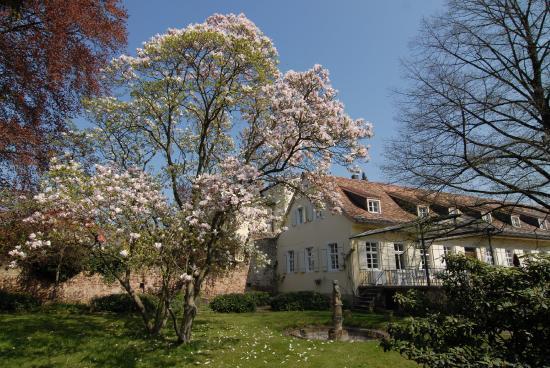 Hotel Ketschauer Hof: Summer Garden