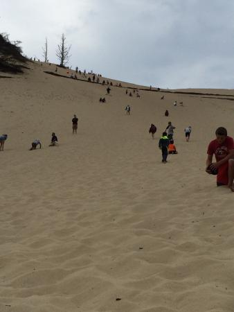Pacific City, OR: Huge sand dune hill to climb