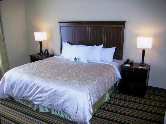 Homewood Suites Charlotte/Ayrsley: 1 King Bed