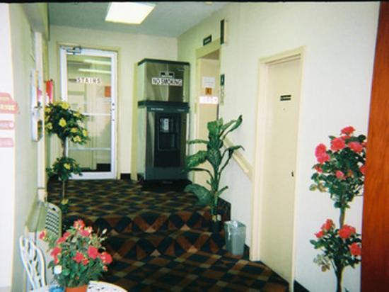 Red Carpet Inn Atlantic City : Lobby View