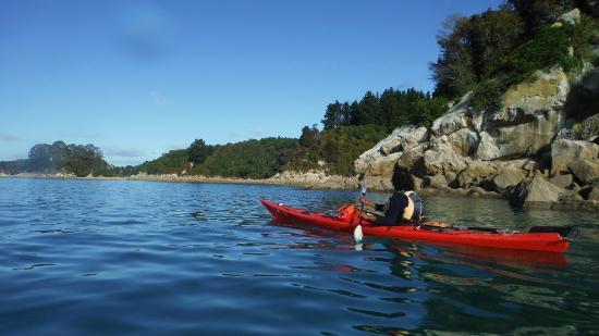 Kaiteriteri Kayaks : Drifting along