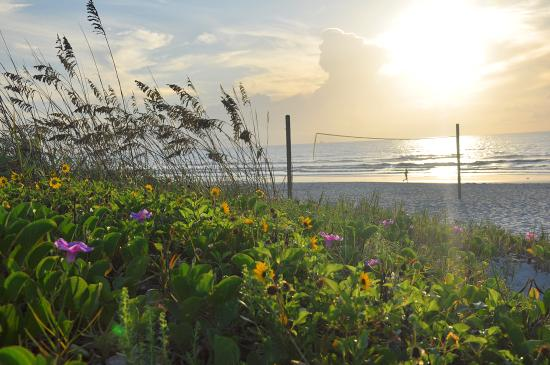 Wakulla Suites - UPDATED 2018 Prices & Resort Reviews (Cocoa Beach ...