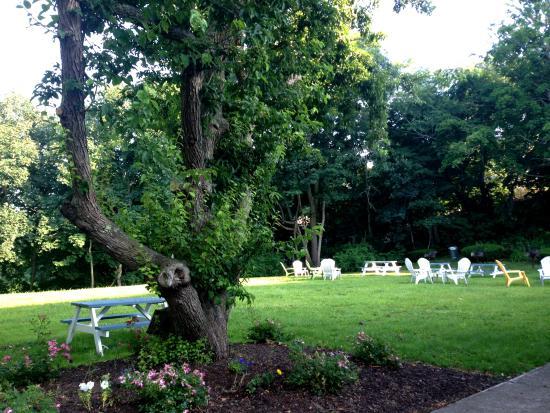 Craigville Beach Inn: Backyard