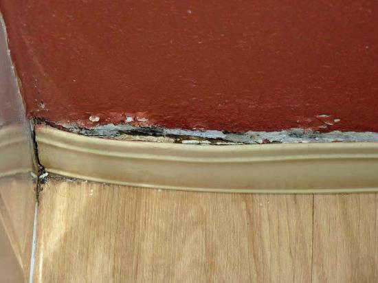 Red Roof Inn Greensboro Coliseum: Bathroom Molding