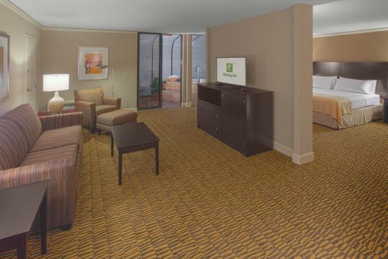Holiday Inn Executive Center - Columbia : Solarium Suite