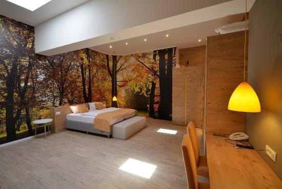 Hotel Emonec: Guest Room