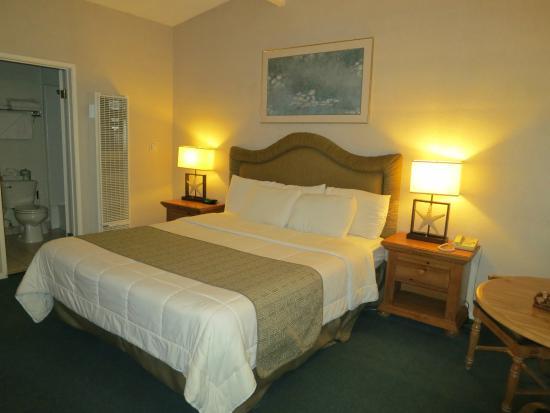 Cheap Hotels San Simeon