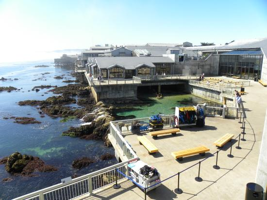 Really Pretty Outside Picture Of Monterey Bay Aquarium