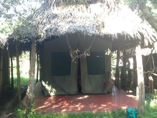 Miti Mingi Eco Camp: Vista de la tienda